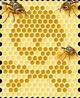 La guerra dell' industria contro la natura: Cosa vogliono dirci le api?
